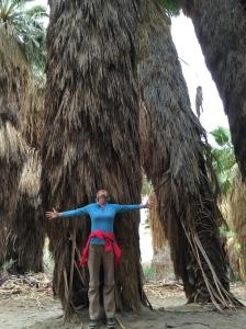 Giant Palms