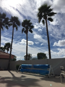 Stunning day poolside at Fiesta Grande RV Resort